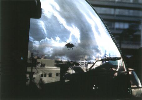 Auton ikkunasta heijastuu taivas ja rakennuksia. Ikkunalla on hyönteinen.