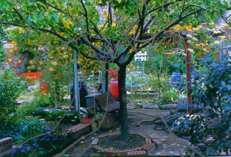 Vihreä puutarha, jonka keskellä kasvaa puu. Kuvan päälle on piirretty vaaleita viivoja, jotka seuraavat kuvan muotoja.