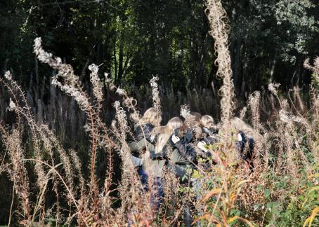 Jo kukkineiden horsmien keskellä kulkee viisi henkilöä kädet toistensa ympärillä. He ovat selin kameraan.