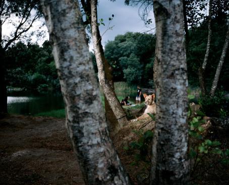 Tito Mouraz: obetitlad, från serien Fluvial, 2015.