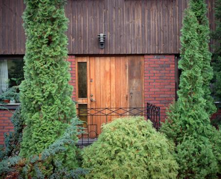 Vihreiden pensaitten ympäröimä sisäänkäynti taloon.