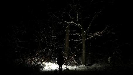 Tumma, luminen maisema. Keskellä valonheittimet valaisevat lumista maata ja puita.