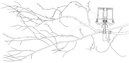 Piirros jossa puun oksia ja lintukamera kiinnitettynä oksaan.