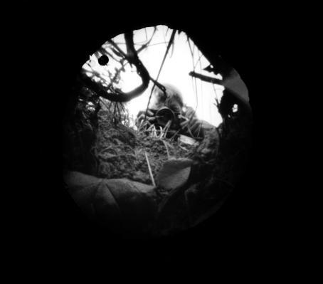 Mustuuden keskellä on vaalea ympyrä, josta näkyy juuria, ruohikkoa ja ihminen ottamassa valokuvaa.