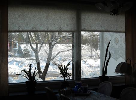 Kaksi isoa ikkunaa, joiden ulkopuolella näkyy lumista maisemaa. Ikkunoiden sisäpuolella on viherkasveja.