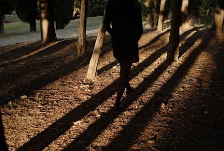 Puita ja puiden pitkiä varjoja. Varjoa pitkin kävelee tumma hahmo.