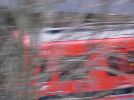 Epäterävässä kuvassa punainen metro ajaa puiden oksien takana.