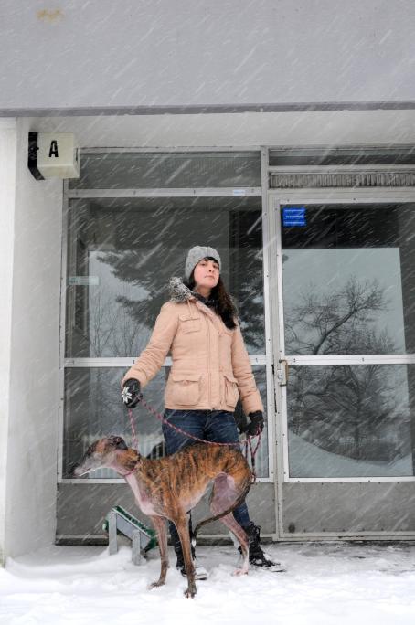 Nainen seisoo koiran kanssa lumisateessa ulko-oven edessä.