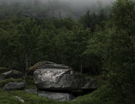 Tummanpuhuva maisema, jonka keskellä on isoja siirtolohkareita ja niiden ympärillä vihreää metsää. Taaempana näkyy kallioseinämää.
