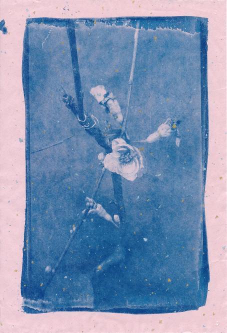 Vaaleanpunaisella taustalla on sinisävyinen kuva, jossa on kasvin oksia ja kukka.