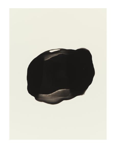 Valkoisen taustan keskellä on musta epätasaisen muotoinen läikkä.