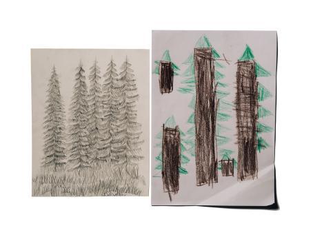 Kaksi piirustusta vierekkäin. Oikealla lapsen piirtämiä puita, vasemmalla hieman edistyneemmän piirtäjän piirtämiä puita.