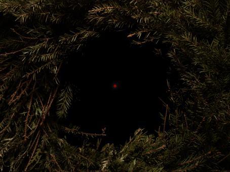 Reunoilla on kuusenoksia ympyrässä, ne jättävät keskelle mustan ympyrän jonka keskellä on pieni punainen piste.