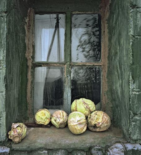 Ikkunasyvennyksessä ikkunan ulkopuolella on jäävuorisalaatteja tai kaalinkeriä, jotka ovat vähän huonon näköisiä.