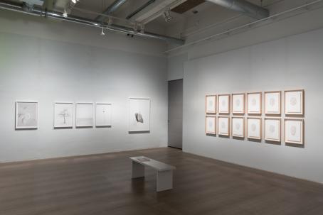 Marta Zgierskan näyttely Post Projekti-tilassa vuonna 2017. Kuva: Virve Laustela / Suomen valokuvataiteen museo