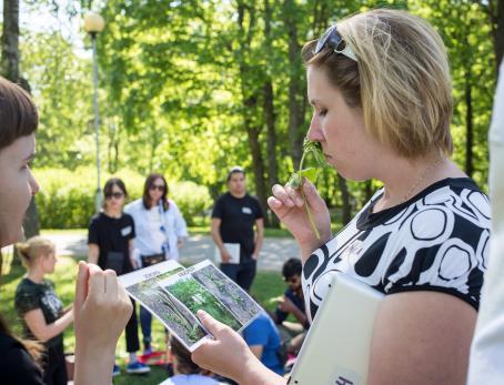 Villiyrttien tunnistamisessa otettiin kaikki aistit avuksi. Kuva: Virve Laustela, Suomen valokuvataiteen museo