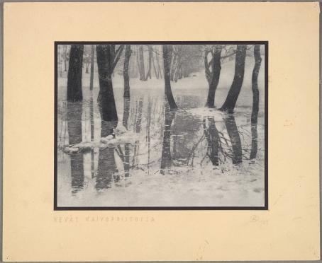 Oiva Kallio: Kevättulva Kaivopuistossa, 1923. Jalopainovedos. Suomen valokuvataiteen museo