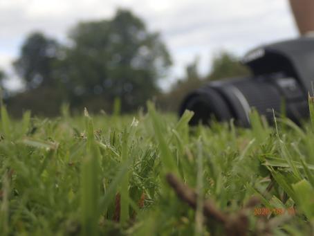 """Maan tasosta otettu kuva nurmikosta. Vähän matkan päässä nurmikolla on järjestelmäkamera. Alareunassa on päiväys """"2020/08/11""""."""
