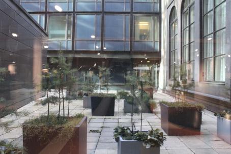 Ikkunan läpi otettu kuva laatoitetulle sisäpihalle, missä on isoissa laatikoissa kasvamassa erilaisia kasveja ja pieniä mäntyjä. Ikkunasta heijastuu sisällä olevia valoja ja heikosti myös kuvaaja.