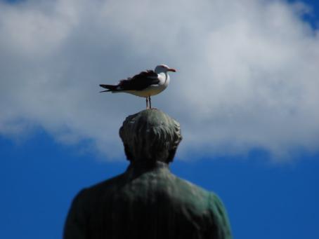 Lokki istuu patsaan pään päällä.